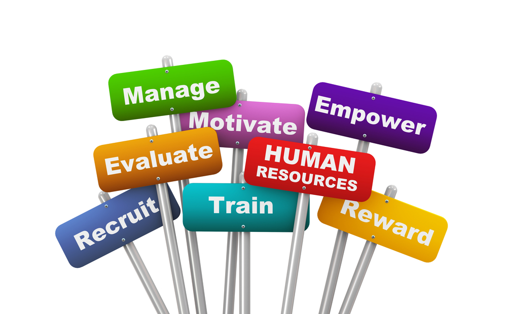 organizing function of management as it relates to human resources